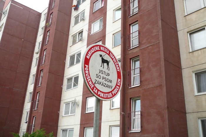 Ilustračný obrázok k článku Náhubok nemusia nosiť všetky psy: Vôdzka je však povinná