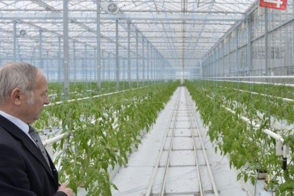 Ilustračný obrázok k článku Nové pracovné miesta v regióne: Vzniknú vďaka skleníku vobci nášho okresu