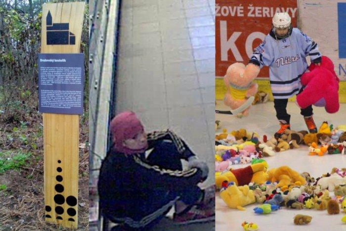 Ilustračný obrázok k článku TOP 6 spravodajských momentov týždňa: Kuriózna krádež, okúzľujúce video aj plyšové hračky na ľade