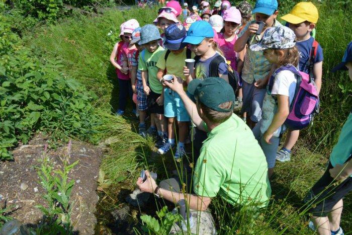 Ilustračný obrázok k článku Zaujímavý deň škôlkárov: Učenie v prírode si pochvaľovali