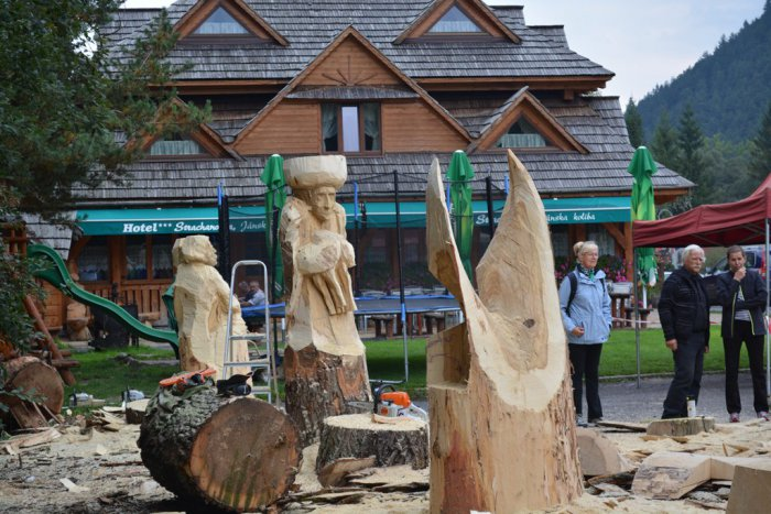 Ilustračný obrázok k článku Jánska dolina sa zmení na drevené kráľovstvo: Neoficiálne majstrovstvá sveta vo vyrezávaní drevených sôch už čoskoro!