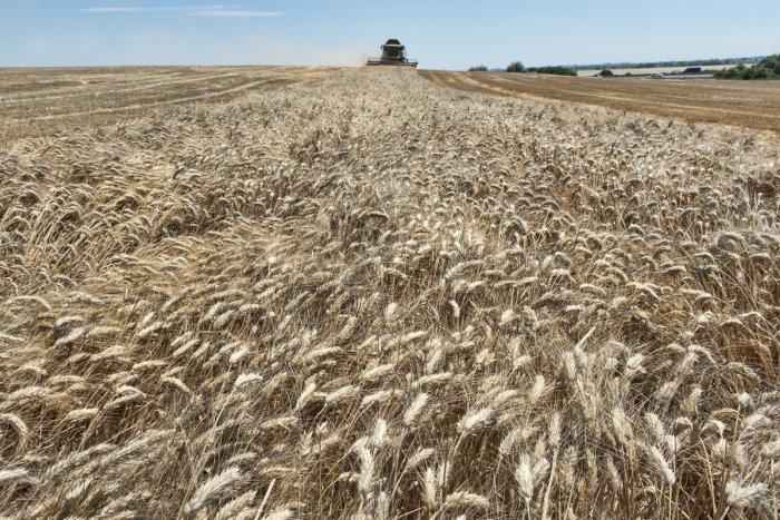 Ilustračný obrázok k článku Kauza agrodotácií: Prokurátor vydal NAKA pokyn na vyšetrenie