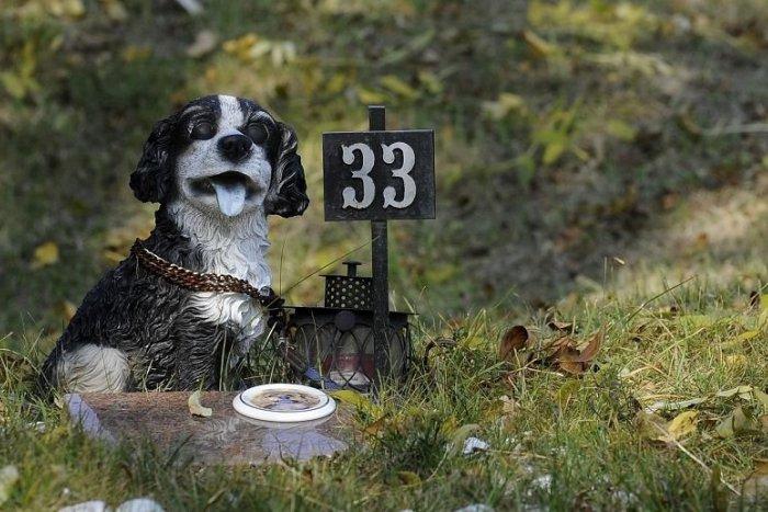Ilustračný obrázok k článku Svojho miláčika môžete už na jeseň pochovať na zvieracom cintoríne v Bratislave