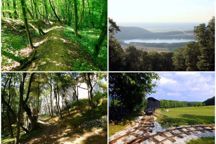 Ilustračný obrázok k článku Lesy v okolí Trnavy majú čo ponúknuť: 4 výlety, na ktoré budete dlho pamätať! FOTO