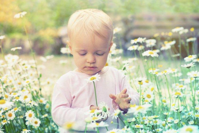 Ilustračný obrázok k článku Aby ste nemali doma alergika: Prevencia u detí sa začína už počas tehotenstva
