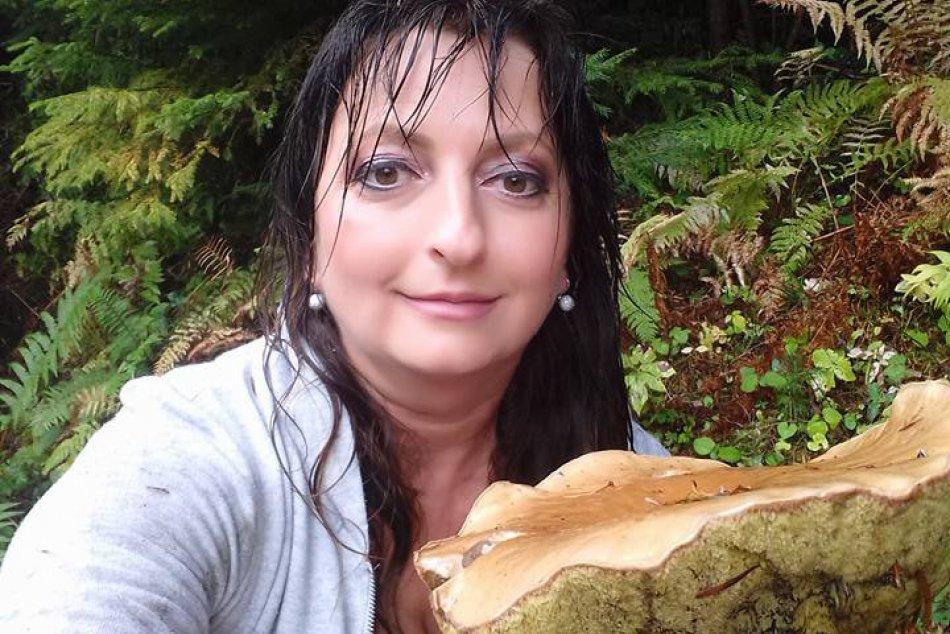 Ilustračný obrázok k článku Rastú ako po daždi: Novovešťanka išla len na prechádzku, nazbierala kopec húb!
