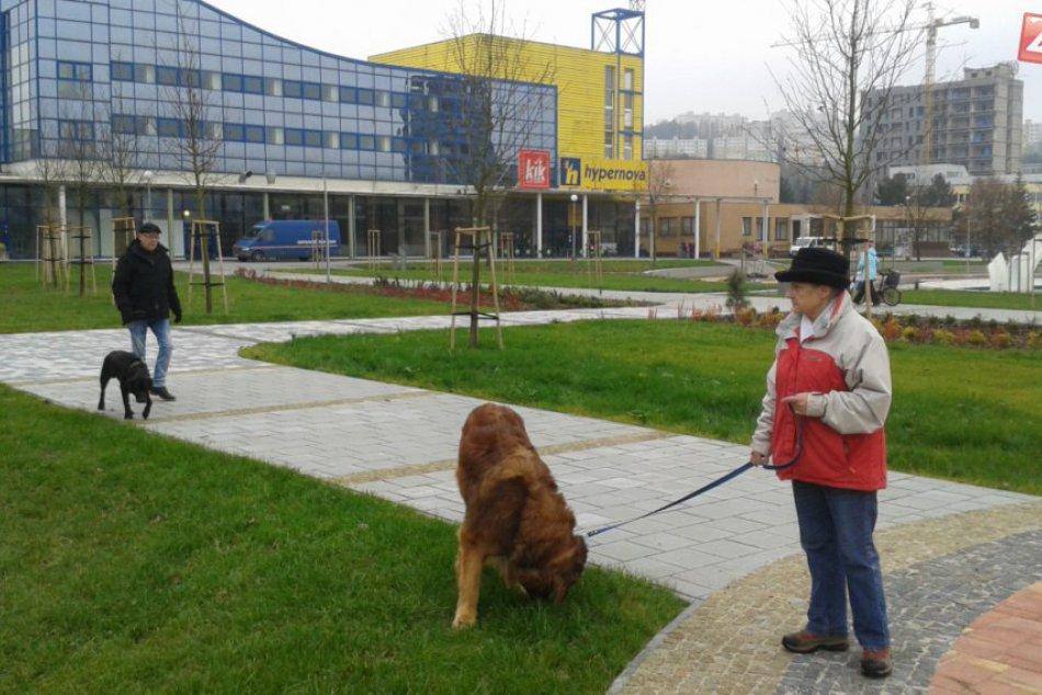 Ilustračný obrázok k článku Považská vyriešila sťažnosti na psov v centre po svojom: Čo vlastne zakázali? FOTO