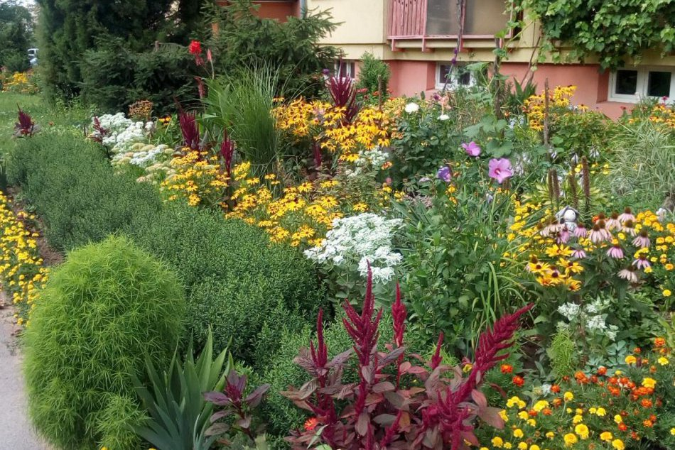 Ilustračný obrázok k článku Myslíte, že máte najkrajšiu okrasnú záhradku, balkón či okno? Lučenec vyhlásil SÚŤAŽ