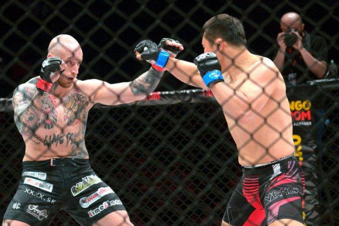 Ilustračný obrázok k článku Lahôdka pre fanúšikov MMA v Poprade: Svetové hviezdy sľubujú top športový zážitok