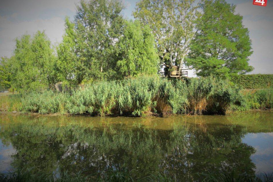 Ilustračný obrázok k článku Štvrtá najsympatickejšia dedina okresu Michalovce: Budkovce sa pýšia nielen rybníkmi
