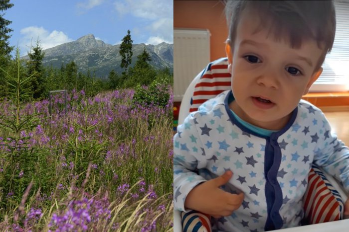 Ilustračný obrázok k článku Dospeláci, učte sa! Dvojročný Jakubko recituje báseň Mor ho!