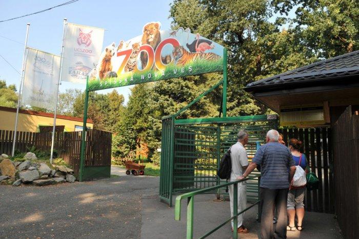 Ilustračný obrázok k článku Spišskonovoveská zoo vyhlásila súťaž: Zapojiť sa môžu všetky vekové kategórie