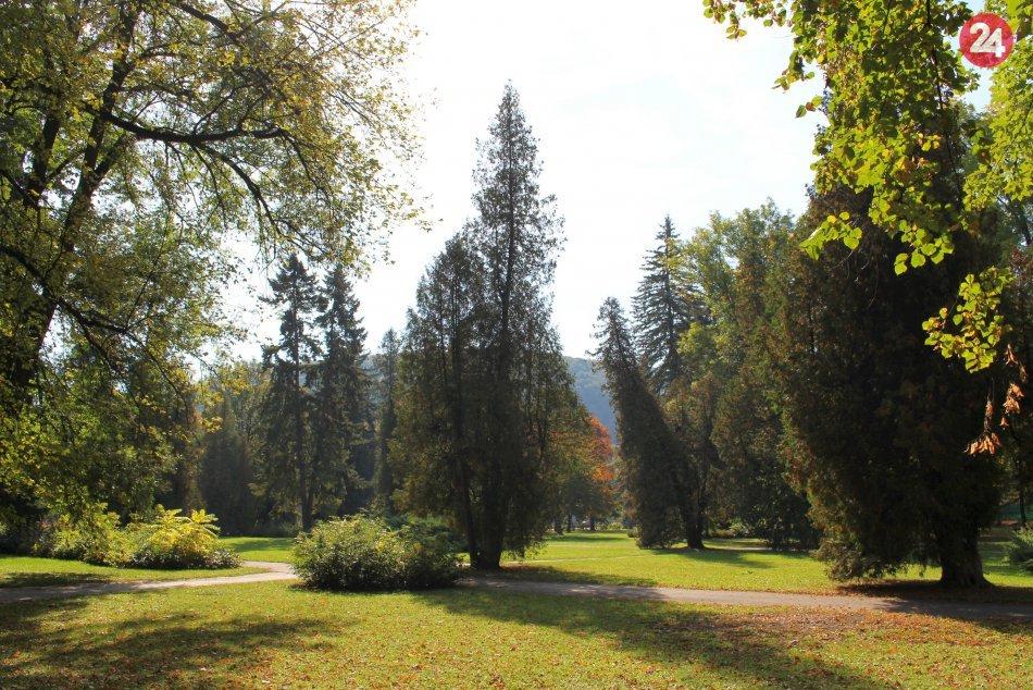 Ilustračný obrázok k článku Krása, čo sa udeje na Horehroní: Do opusteného historického parku sa po 100 rokoch vráti život