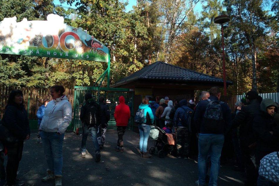 Ilustračný obrázok k článku Predaj nulovej eurobankovky vyvolal v Spišskej ošiaľ: Niektorí ľudia nocovali pred zoo