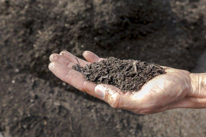 Ilustračný obrázok k článku V Žarnovici pribudne novinka: Biologický odpad bude zbierať mobilná kompostáreň