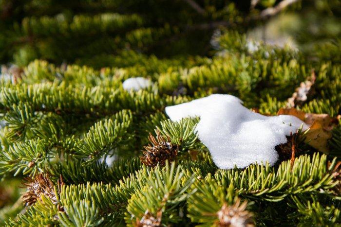 Ilustračný obrázok k článku Čaká nás jarné počasie: Snehová pokrývka sa bude topiť aj na horách