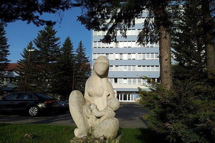 Ilustračný obrázok k článku Vážne obavy v breznianskej nemocnici: Dokážu si predstaviť fungovanie bez pôrodnice?