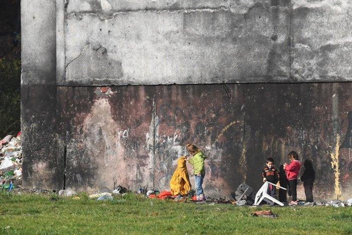 Ilustračný obrázok k článku Deti na Luníku IX utýrali psa. Hádzali doňho kamene, napokon skonal