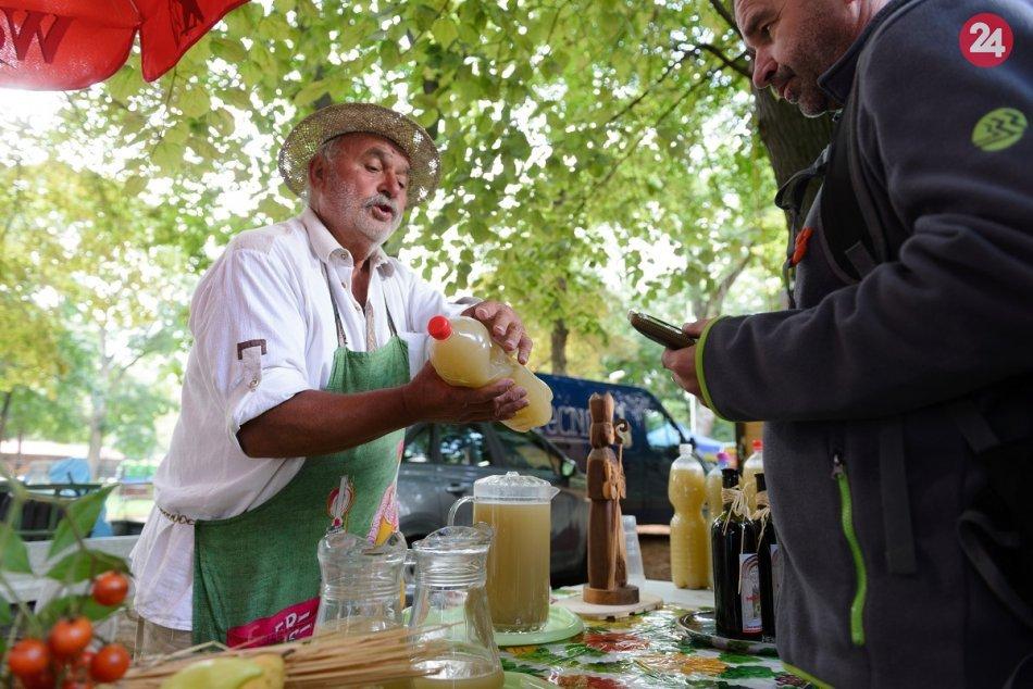 Ilustračný obrázok k článku Na jeseň nuda nehrozí: Šaľanov lákajú na vinobranie plné folklóru