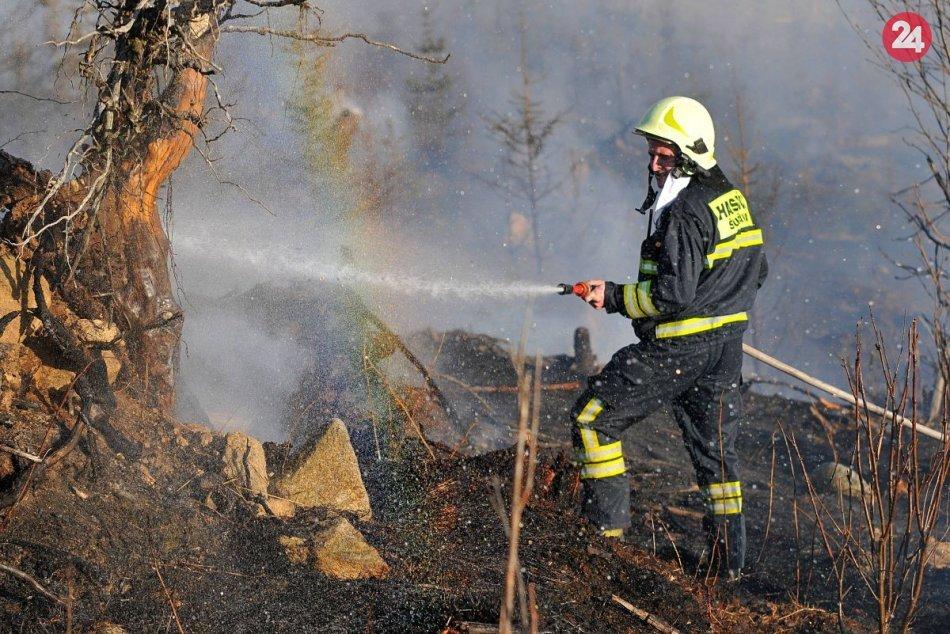Ilustračný obrázok k článku V lesoch nad Bratislavou horí! Požiar v ťažko dostupnom teréne komplikuje vietor