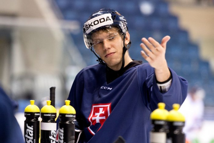 Ilustračný obrázok k článku Hokejový reprezentant doplatil na vírus: Zarába si s lopatou v ruke! VIDEO