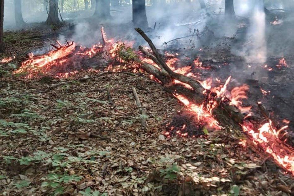 Ilustračný obrázok k článku Hasiči zasahovali pri rozsiahlom požiari trávy, vyhľadávajú jeho skryté ohniská