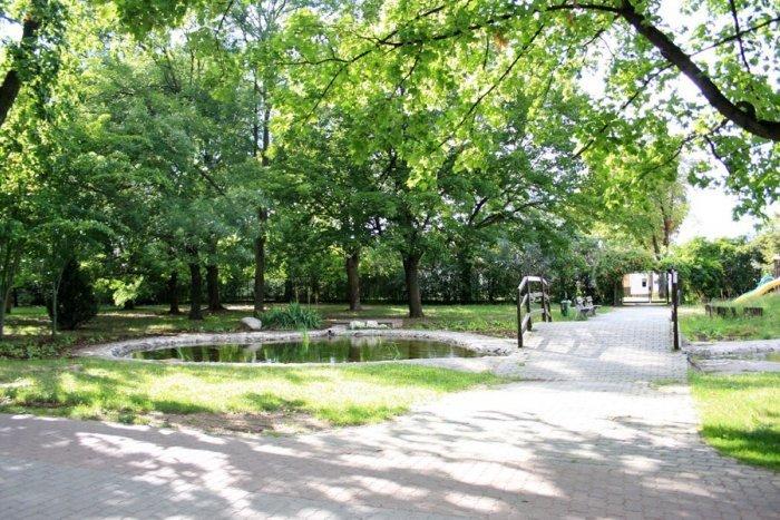 Ilustračný obrázok k článku Dole musia ísť ďalšie stromy! Vypília vyše 60 drevín v Parku Janka Kráľa