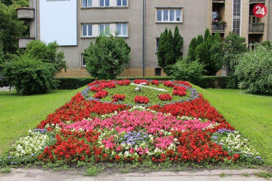 Ilustračný obrázok k článku Páčia sa vám rozkvitnuté sídliská? Centrum Bystrice očarí ešte viac, FOTO