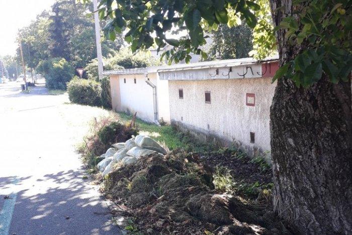 Ilustračný obrázok k článku Môžete vyhadzovať bio odpad pred vlastný dom?