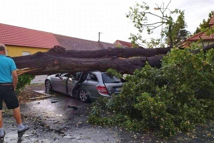 Ilustračný obrázok k článku Spadnuté stromy a požiar po zásahu bleskom: Búrka narobila poriadne problémy