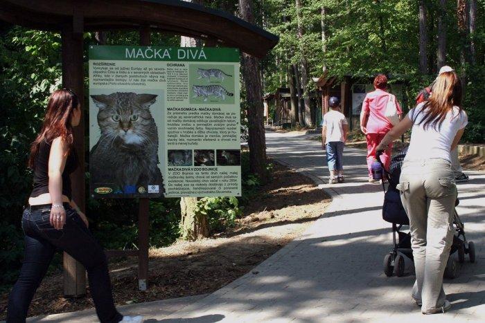 Ilustračný obrázok k článku Zoo Bojnice s novinkou: Takto vylepšili Karpatský chodník