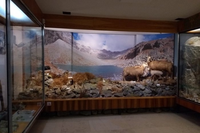Ilustračný obrázok k článku Múzeum TANAP-u je už otvorené: Pribudli TAKÉTO kúsky!