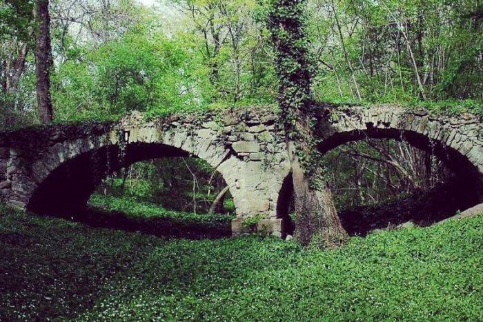 Ilustračný obrázok k článku TOP 10 tipov na výlety v okrese Bratislava: Kam do prírody počas obmedzeného vychádzania?