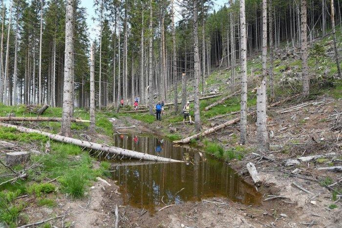 Ilustračný obrázok k článku Aktivisti spustili petíciu: Žiadajú STOPKU pre výstavbu v Demänovskej doline