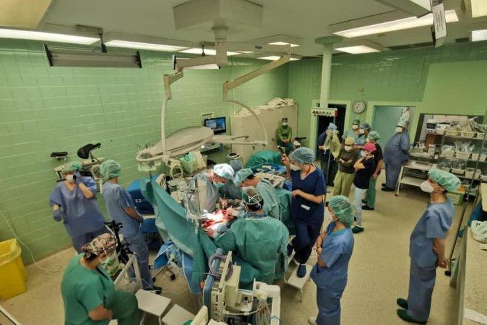 Ilustračný obrázok k článku Úžasná spolupráca lekárov: Spoločnými silami zachránili 4 životy