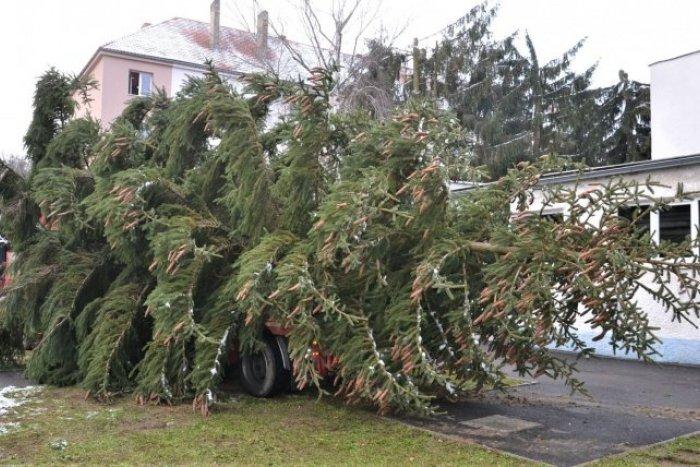 Ilustračný obrázok k článku Vianočný stromček už zdobí humenské námestie, FOTO