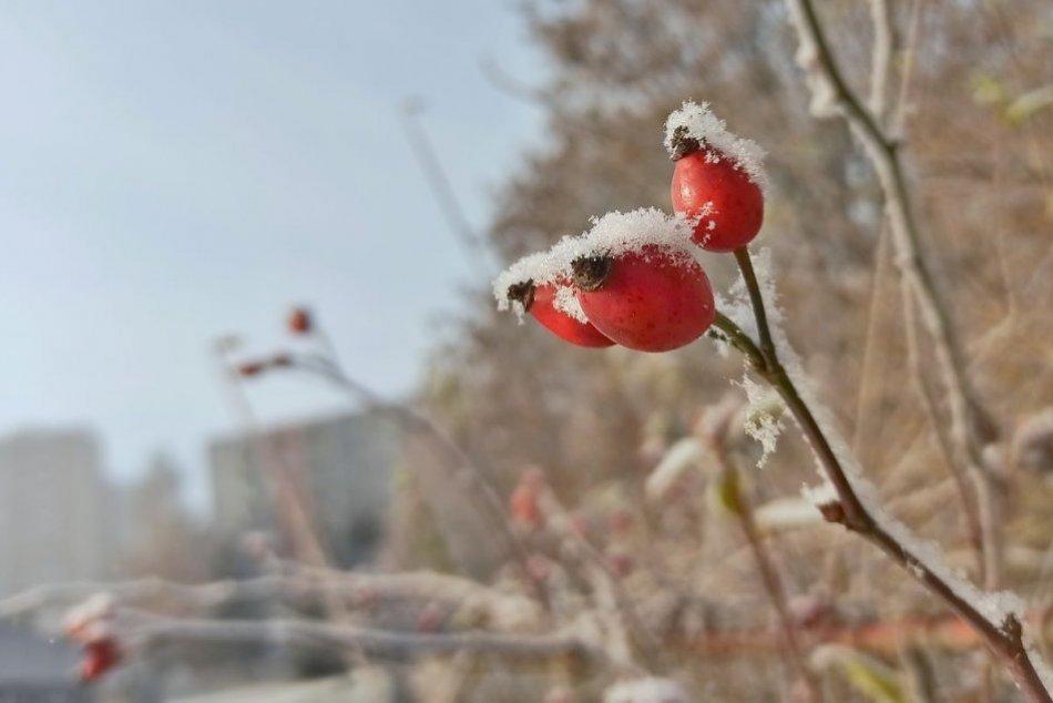 Ilustračný obrázok k článku Čakajú nás prvé centimetre snehu? Meteorológovia vydali výstrahu pre okres Ružomberok