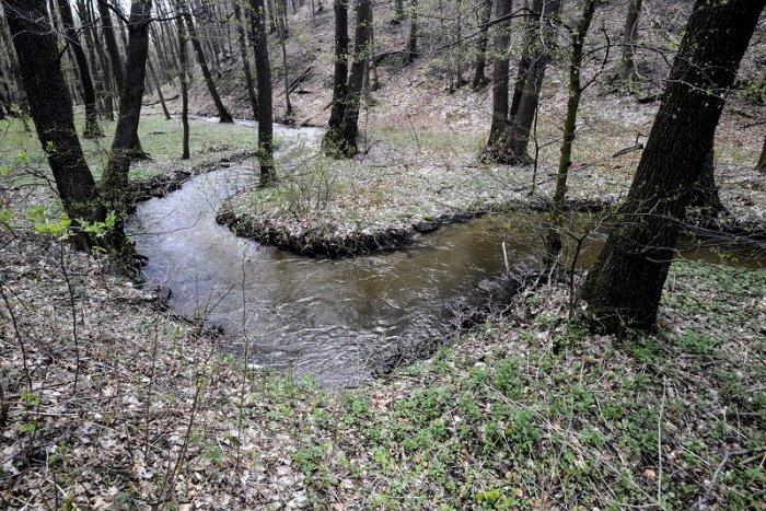 Ilustračný obrázok k článku Skvelá správa z lesoparku: Pramene Vydrice by sa mali stať prírodnou rezerváciou