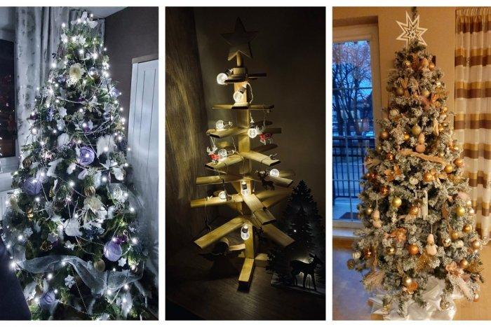 Ilustračný obrázok k článku Nazrite Novovešťanom do obývačiek: Veľká GALÉRIA vianočných stromčekov našich čitateľov