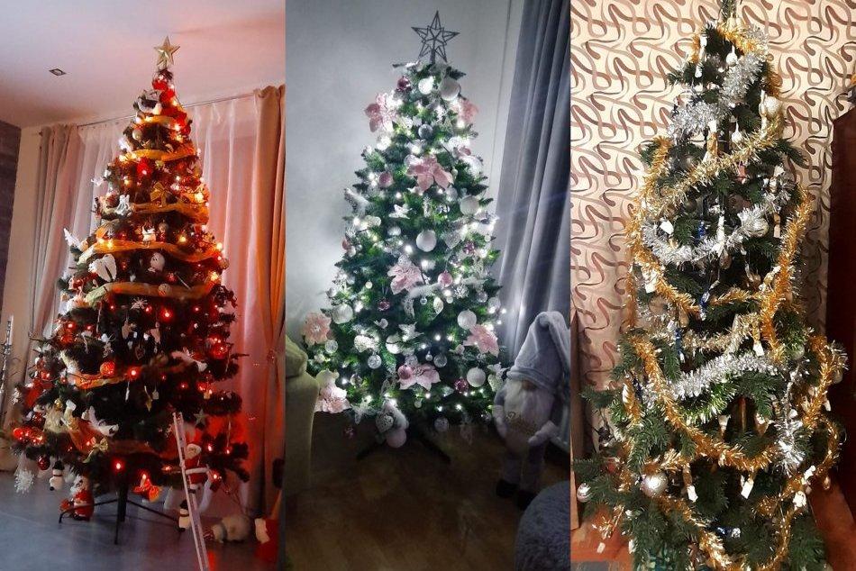 Ilustračný obrázok k článku Čitatelia ukázali svoje vianočné stromčeky: Sledujete tú parádu, FOTO od vás!