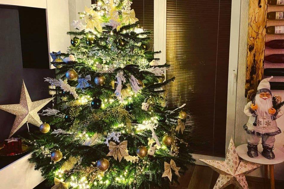 Ilustračný obrázok k článku Košičania ukázali svoje vianočné stromčeky. Veľká GALÉRIA od našich čitateľov