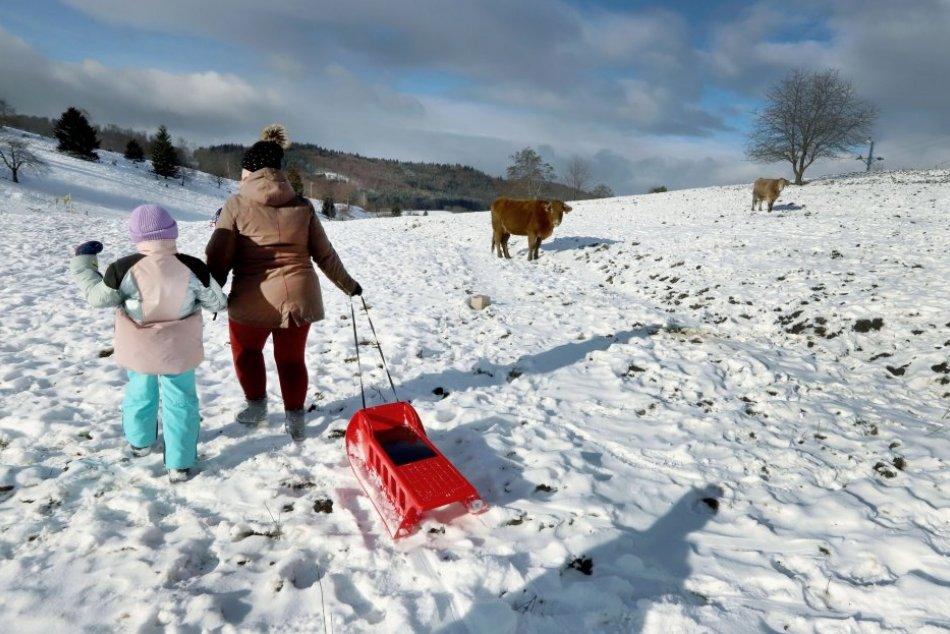 Ilustračný obrázok k článku Na svahoch sú sánkari aj kravy: Takto to vyzerá v zatvorenom stredisku pri Zvolene, FOTO