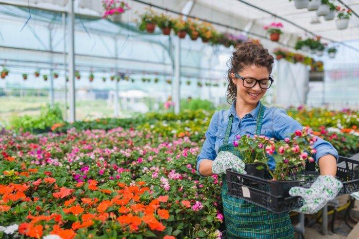 Ilustračný obrázok k článku Slovenskí záhradníci vytvorili iniciatívu, chcú podporiť záujem Slovákov o záhradkárčenie a domáce firmy