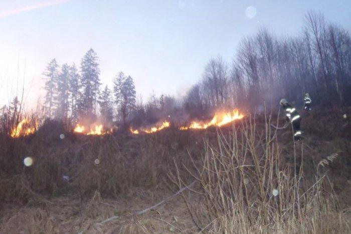Ilustračný obrázok k článku Rúbanisko v plameňoch: Hasiči v nasadení na rozľahlej časti lesa