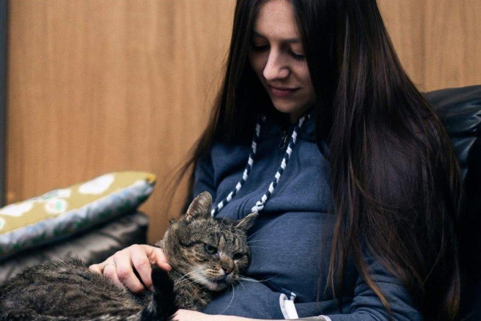 Ilustračný obrázok k článku Opustené mačičky v Revúcej nezostali napospas osudu: Martina zachraňuje nemé tváre