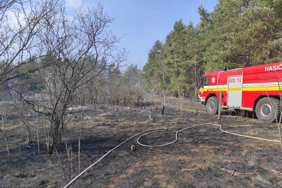 Ilustračný obrázok k článku Hasiči zasahovali pri veľkom požiari: Plamene zachvátili stromy a kríky, FOTO