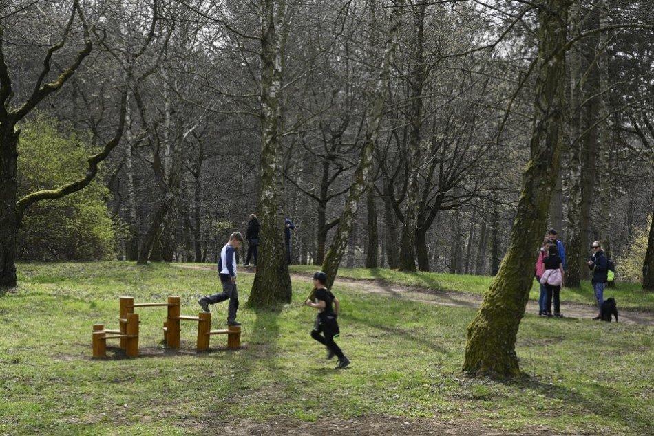 Ilustračný obrázok k článku Výrub v lesoparku Brezina: V Čerešňovom sade odstránia nebezpečné stromy