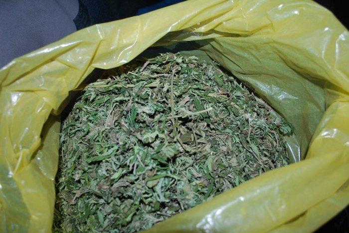 Ilustračný obrázok k článku Protidrogové dalo stopku zásielke marihuany za 33 miliónov eur! Smerovala na Slovensko