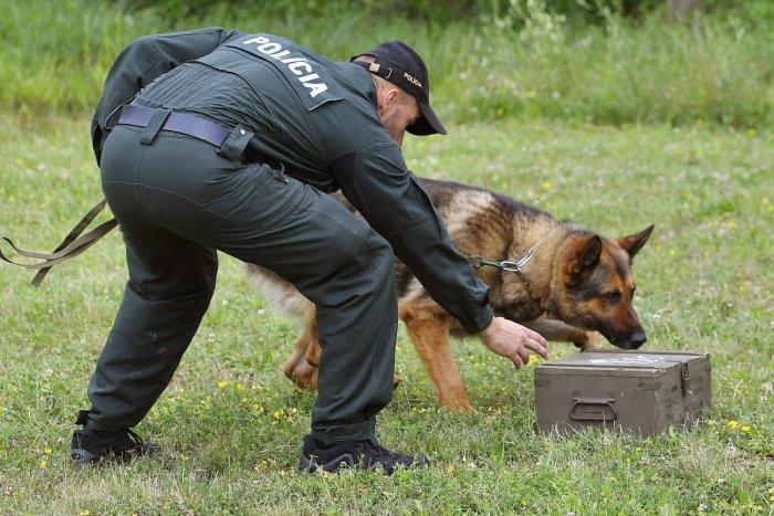 Ilustračný obrázok k článku Otravy psov na sídlisku Juh v Trenčíne? Polícia sa pustila do prípadu