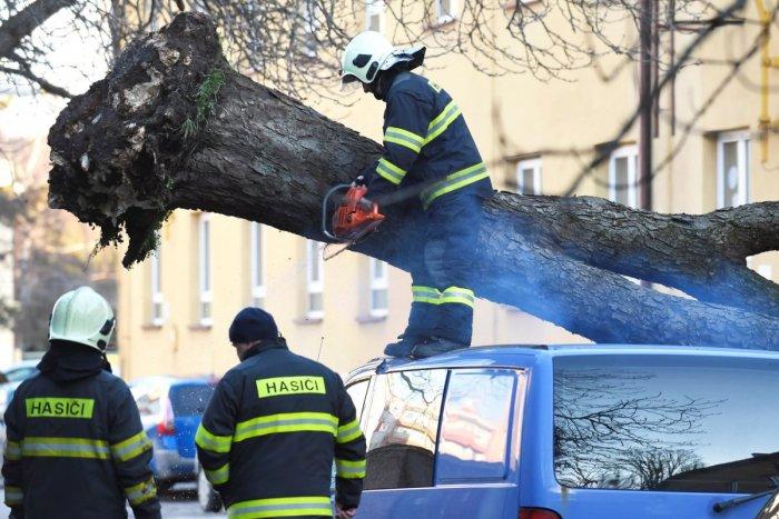 Ilustračný obrázok k článku Hasiči majú pohotovosť: Silný vietor zhadzuje strechy, zlomené stromy ničia autá!